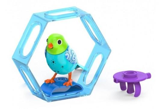 Dizzy Digibirds z Ramką Kolekcja 1